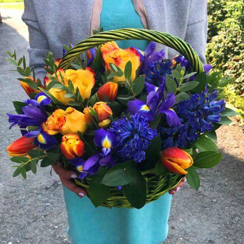 № 442  корзина с тюльпанами и гиацинтами
