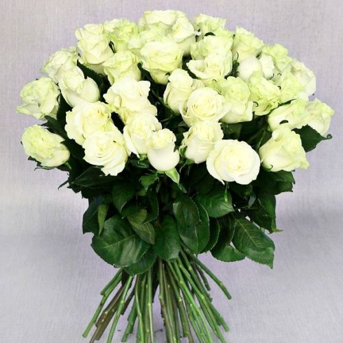 №14 акция 51 белая роза 80-90 см эквадор
