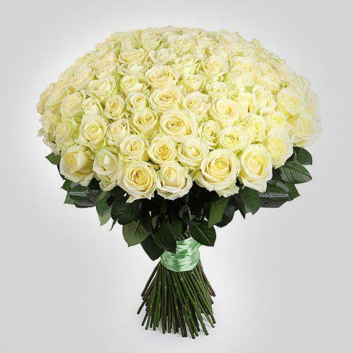 №15 акция 101 белая роза 80-90 см  эквадор