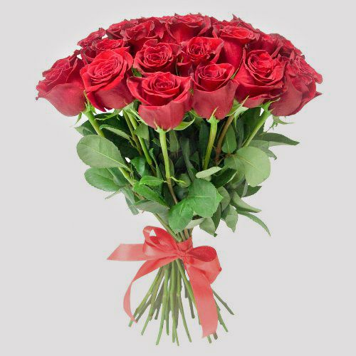 №1 акция 25  красных роз 50 см  эквадор