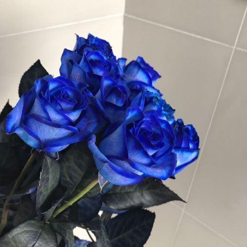 № 233 синие розы