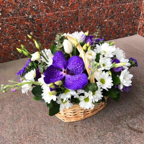 № 426 корзина с орхидеей и тюльпанами