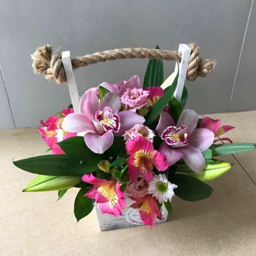 №227 ящик с орхидеями