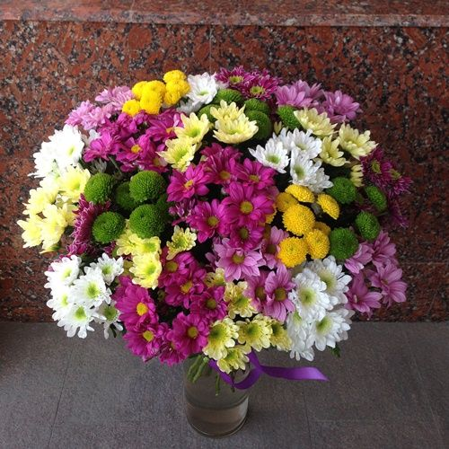 №25 акция 25 кустовых хризантем