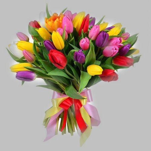 №19 акция 25 тюльпанов