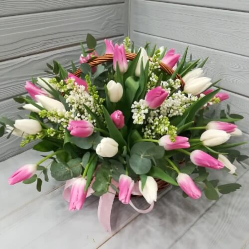 № 187 корзина с тюльпанами