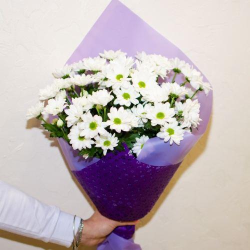 № 55 акция 7 белых кустовых хризантем в упаковке