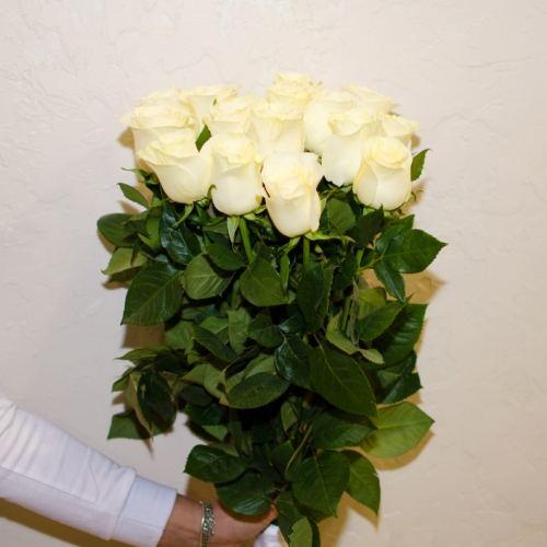 № 41 акция 15 белых высоких роз Эквадор на ленте