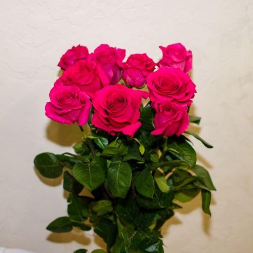 № 46 акция 9 розовых высоких роз эквадор на ленте