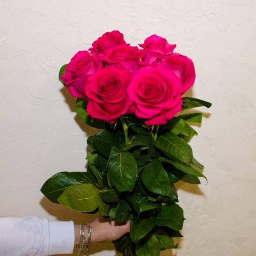 № 49 акция 7 розовых высоких роз эквадор на ленте