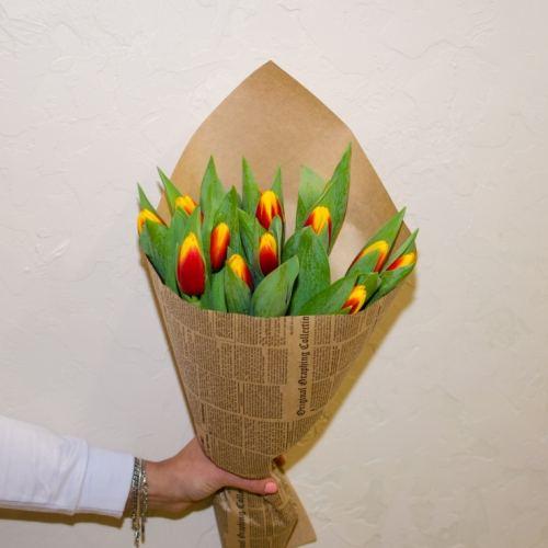 № 73 акция 7 цветных тюльпанов в упаковке